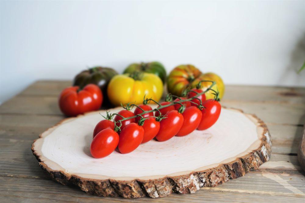 Grape tomatoes on the vine