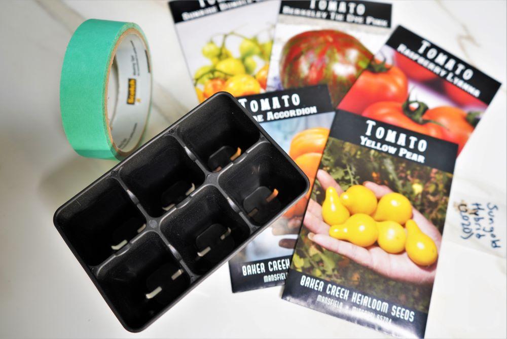 Planting tomato seeds - germinating tomato seeds fast